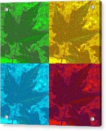 Leaf Pop Art Acrylic Print by Barbara McDevitt