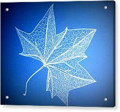 Leaf Study 2 Acrylic Print by Cathy Jacobs