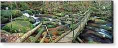 Leap Of Faith Broken Bridge, Becky Acrylic Print by Panoramic Images