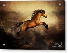 Leap Of Faith Acrylic Print by Shanina Conway