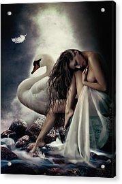 Leda And The Swan Acrylic Print by Shanina Conway
