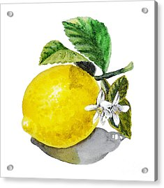 Lemon Flowers And Lemon Acrylic Print by Irina Sztukowski