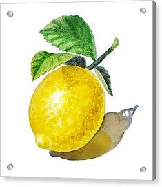 Lemon Acrylic Print by Irina Sztukowski
