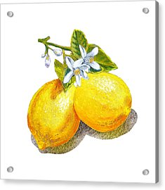 Lemons And Blossoms Acrylic Print by Irina Sztukowski