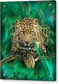 Leopard - Spirit Of Empowerment Acrylic Print by Carol Cavalaris