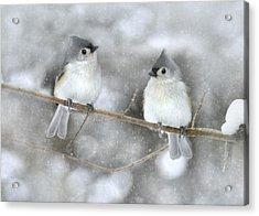 Let It Snow Acrylic Print by Lori Deiter