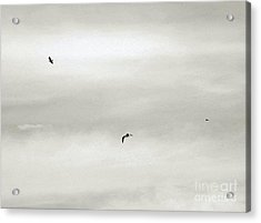 Let Your Spirit Soar Acrylic Print by Robyn King