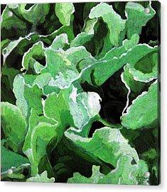 Lettuce Go Green - Food Art Acrylic Print by Linda Apple