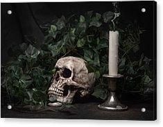 Life And Death Acrylic Print by Tom Mc Nemar