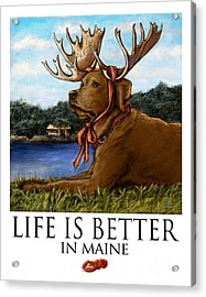 Life Is Better In Maine Chocolate Lab Acrylic Print by Kathleen Harte Gilsenan