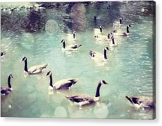 Life Is But A Dream Acrylic Print by Amy Tyler