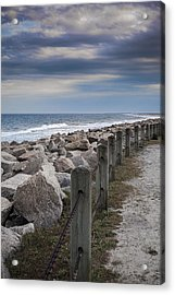 Life On The Rocks Acrylic Print by Chris Brehmer Photography