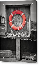 Life Saver Acrylic Print by Elena Elisseeva