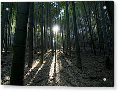Light At The End Acrylic Print by Aaron S Bedell