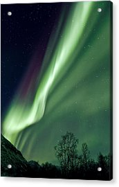 Light In The Sky Acrylic Print by Dave Bowman