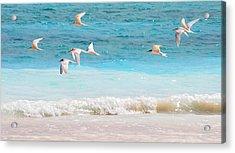 Like Birds In The Air Acrylic Print by Jenny Rainbow