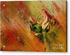 Lily My Lovely - S23ad Acrylic Print by Variance Collections