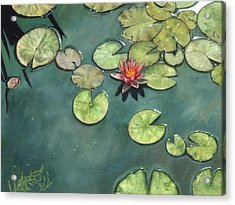 Lily Pond Acrylic Print by David Stribbling