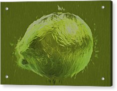 Lime Food Digital Painting Acrylic Print by David Haskett