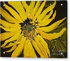 Linda's Arizona Sunflower 2 Acrylic Print by Sherry Harradence