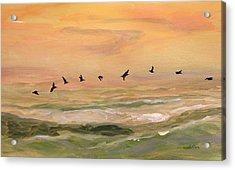 Line Of Pelicans Acrylic Print by Julianne Felton