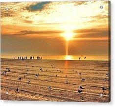 Liquid Gold Sunrise Acrylic Print by Kim Bemis