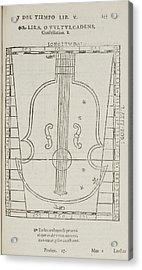 Lira Star Constellation Acrylic Print by British Library