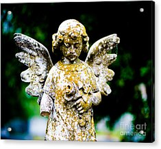 Little Angel Acrylic Print by Sonja Quintero