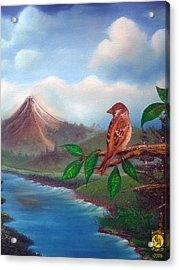 Little Bird Acrylic Print by Richard Bantigue