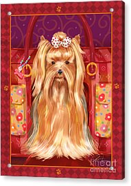 Little Dogs - Yorkshire Terrier Acrylic Print by Shari Warren