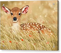 Little Fawn Acrylic Print by Veronica Minozzi
