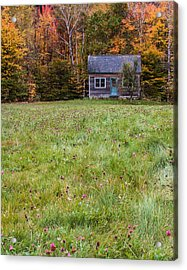 Little House At Woodlands Edge In New Hampshire Acrylic Print by Karen Stephenson