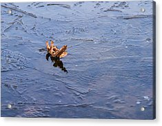 Little Navy - Fram In Pack Ice - Featured 3 Acrylic Print by Alexander Senin