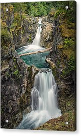 Little Qualicum Falls Acrylic Print by Carrie Cole
