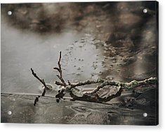 Little Thing Acrylic Print by Odd Jeppesen
