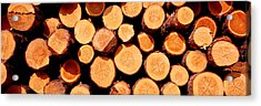 Logs Acrylic Print by Panoramic Images