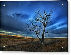 Lonely Sentinel Acrylic Print by Thomas Zimmerman
