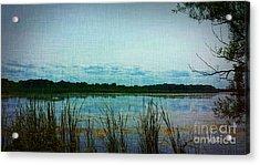 Long Pond Acrylic Print by Judy Via-Wolff