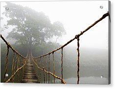 Long Rope Bridge Acrylic Print by Skip Nall