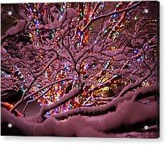 Longwood Lights 1 Acrylic Print by Richard Reeve