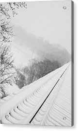 Looking Over Acrylic Print by Cheryl Helms