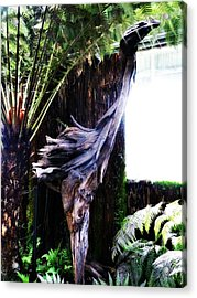 Looking Through The Window Of Extinction Acrylic Print by Steve Taylor