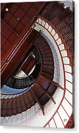 Looking Up Acrylic Print by Bernard  Barcos