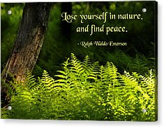 Lose Yourself In Nature Acrylic Print by Mike Flynn