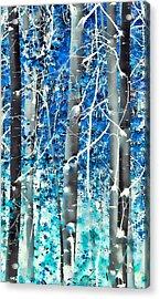 Lost In A Dream Acrylic Print by Don Schwartz
