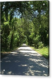 Lost In Marion County Florida Acrylic Print by Lisa Piper Menkin Stegeman