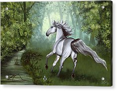 Lost In The Forest Acrylic Print by Kate Black