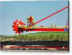 Louisiana Giant 3 Acrylic Print by Steve Harrington
