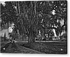 Louisiana Moon Rising Monochrome  Acrylic Print by Steve Harrington