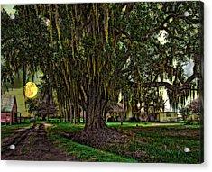 Louisiana Moon Rising Acrylic Print by Steve Harrington